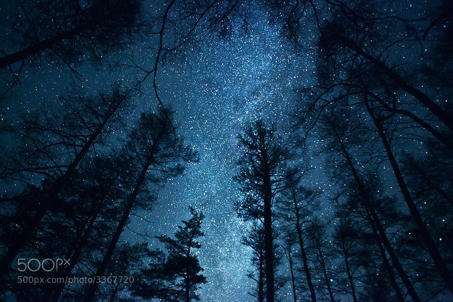 Photograph Milky Way by Alexandr Gryzlov on 500px
