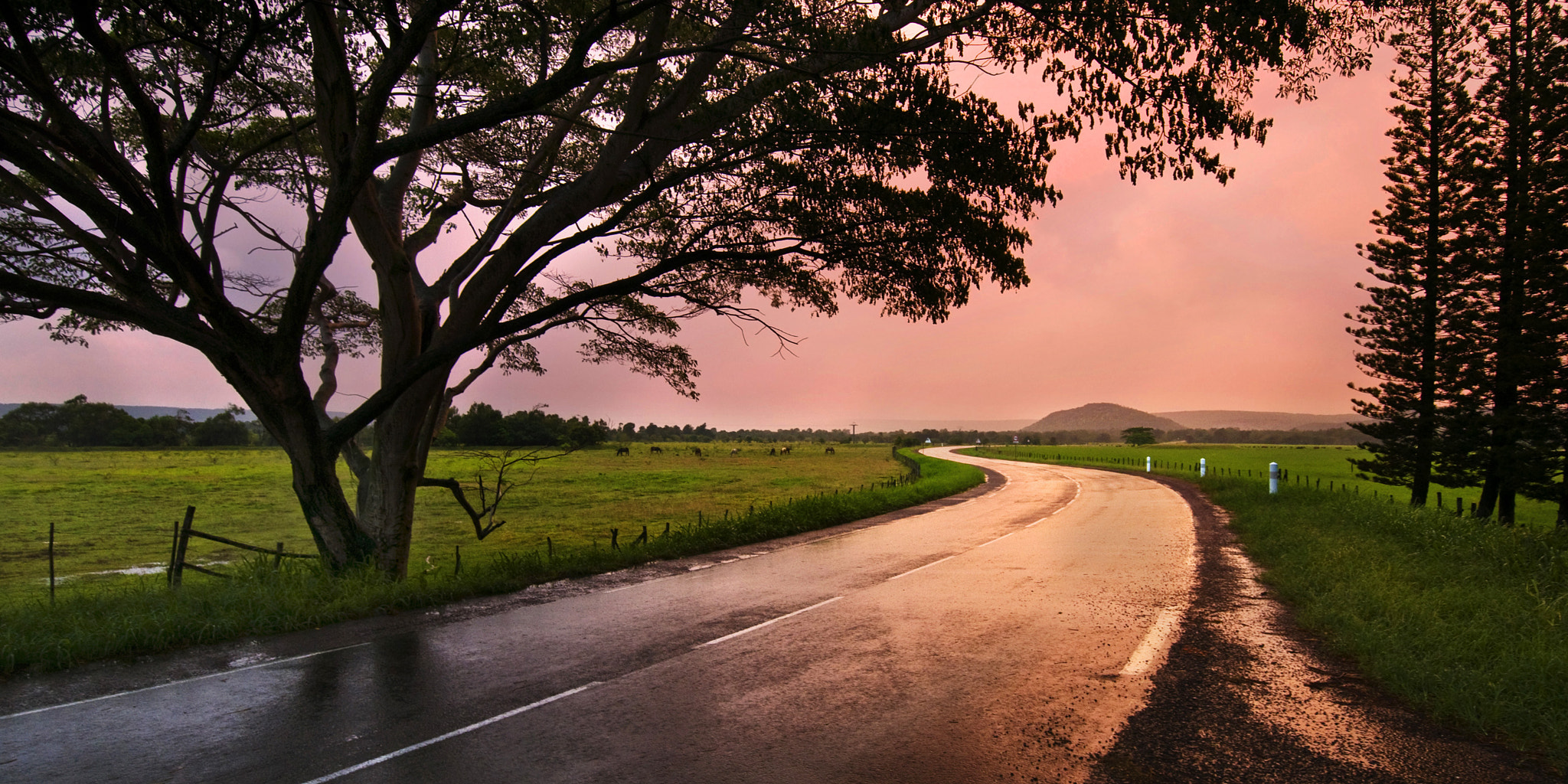 Photograph Poya by Beloon  on 500px