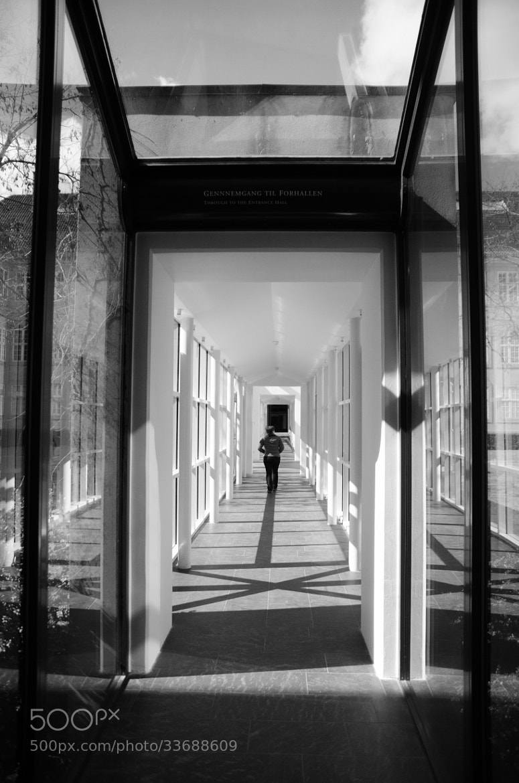 Photograph T by Nuno  Bonito on 500px