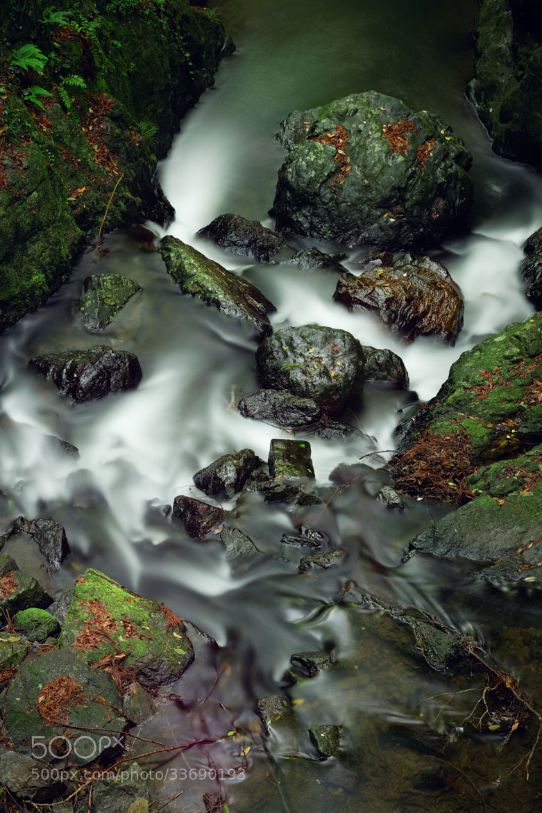 Photograph a Sluggish Stream by Yoshihiko Wada on 500px