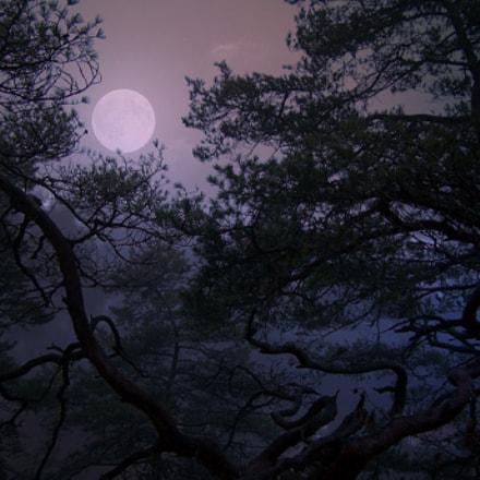 Verträumter Mond
