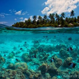 Island by Marcus Pauli on 500px.com