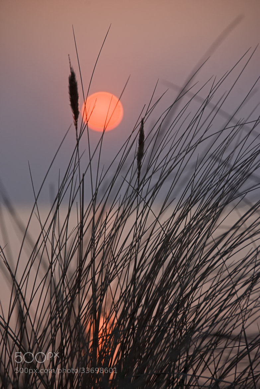 Photograph Hiddensee Sunset by Joachim G.  Pinkawa on 500px