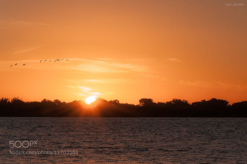 Photograph Sunset! by Paulo Luft on 500px