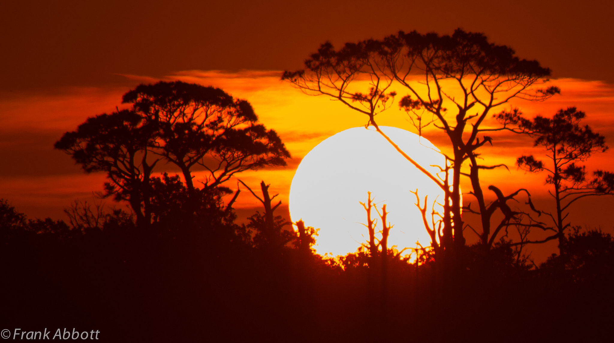 Photograph Sun Rise by Franklin Abbott on 500px