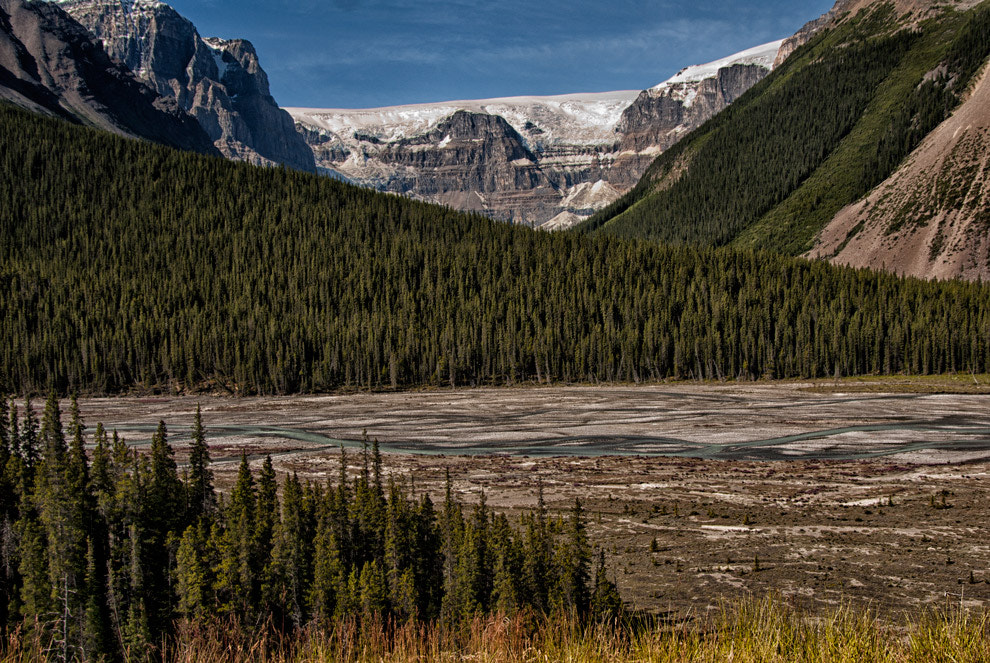 Photograph Tne Bow Valley Alberta Canada by Greg McLemore on 500px