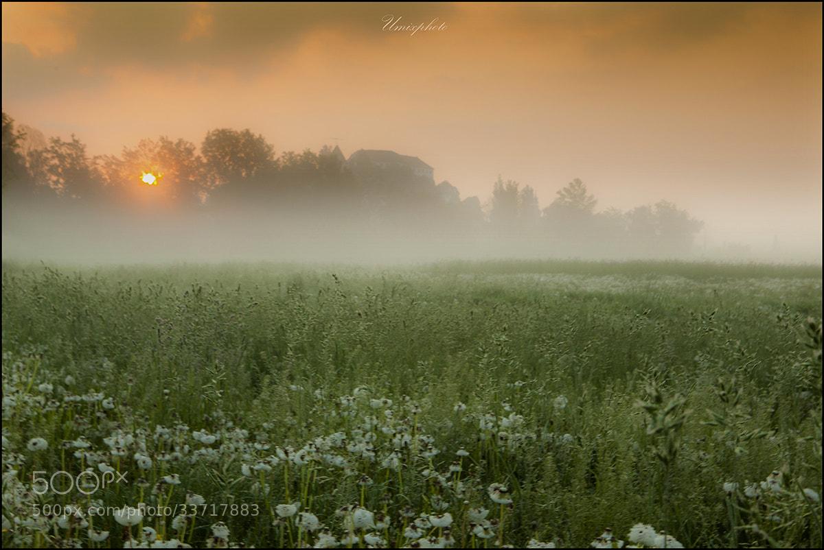 Photograph Castle In The Morning by Jaro Miščevič on 500px