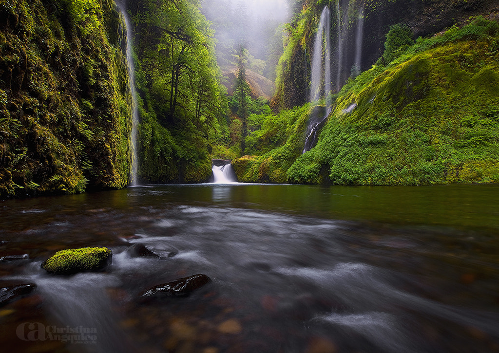 Photograph Weeping Walls by Christina Angquico on 500px