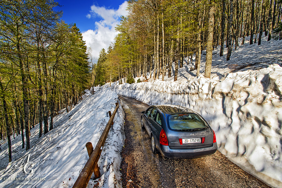 Close encounter of spring and winter on Zavižan, Velebit mtn, as snow refuses to retreat without fight. This winter it has exceeded the depth of 3m, so road to Zavižan station finally opened after 6 months of isolation.