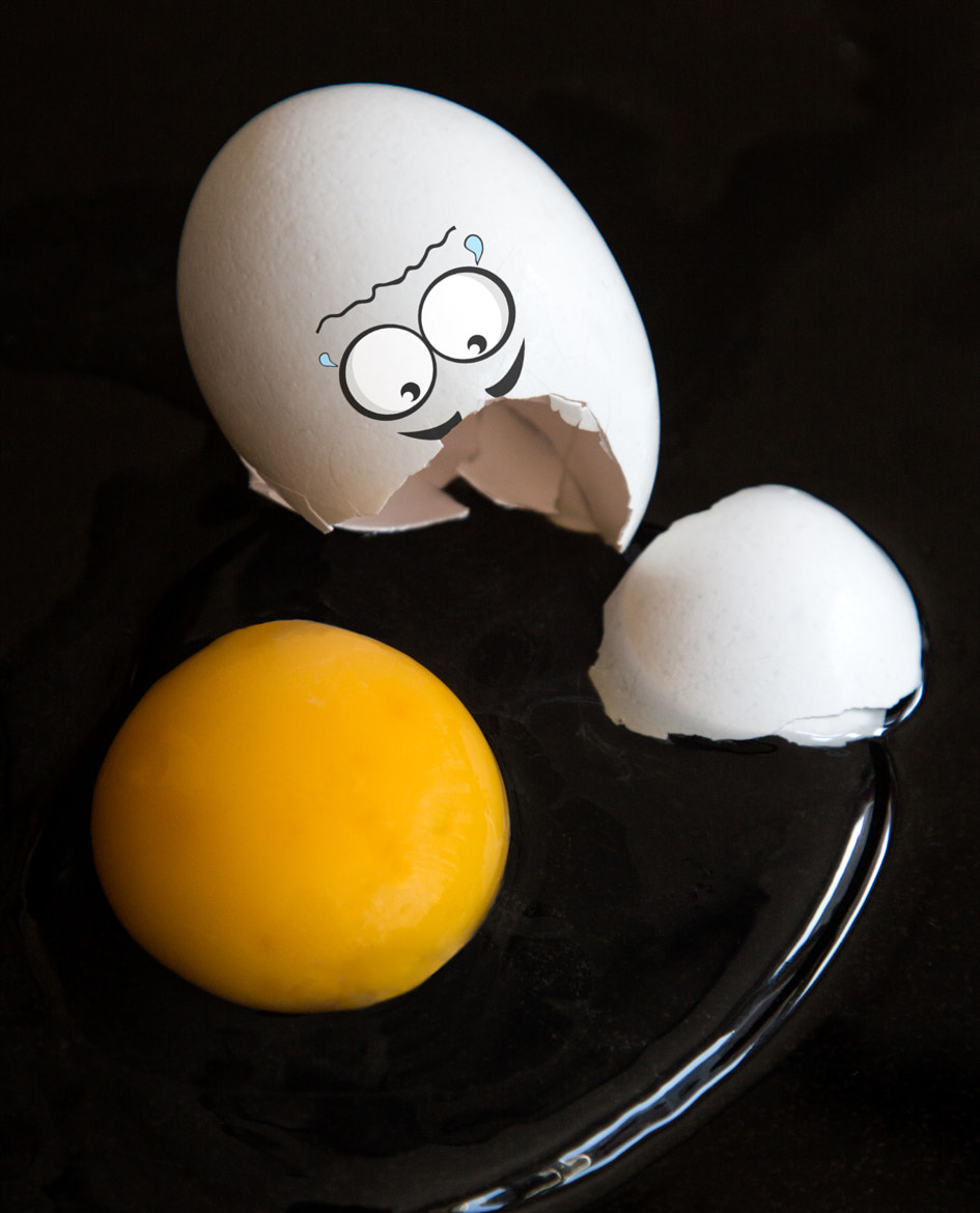 Photograph Egg-cident by Michael Cavén on 500px