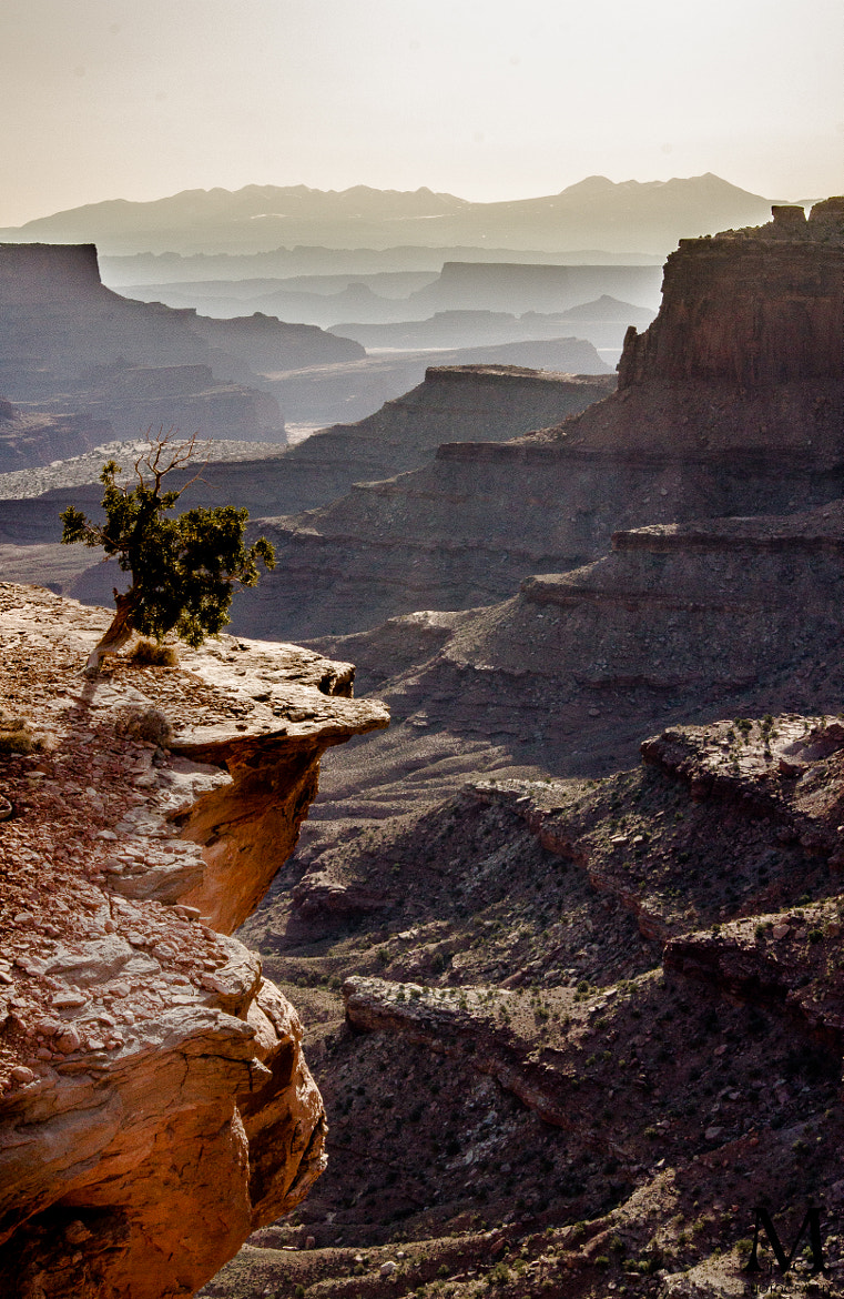 Photograph Desert Valley by JC McGreehan on 500px