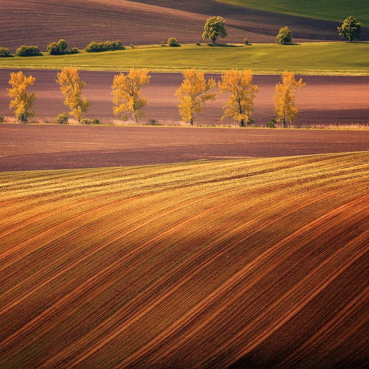 Photograph SOUTH MORAVIA by TOMÁŠ MORKES on 500px