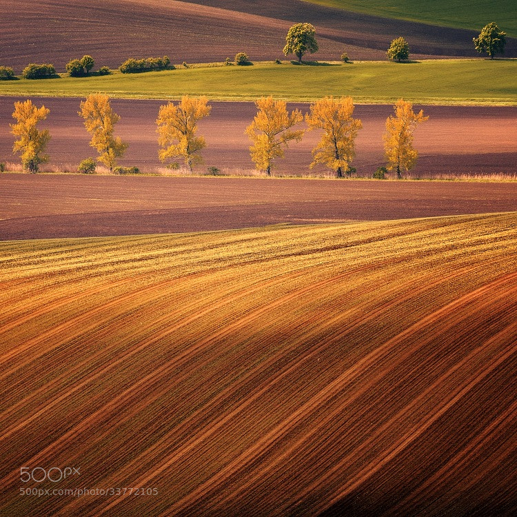 Photograph SOUTH MORAVIA by Tomáš Morkes on 500px