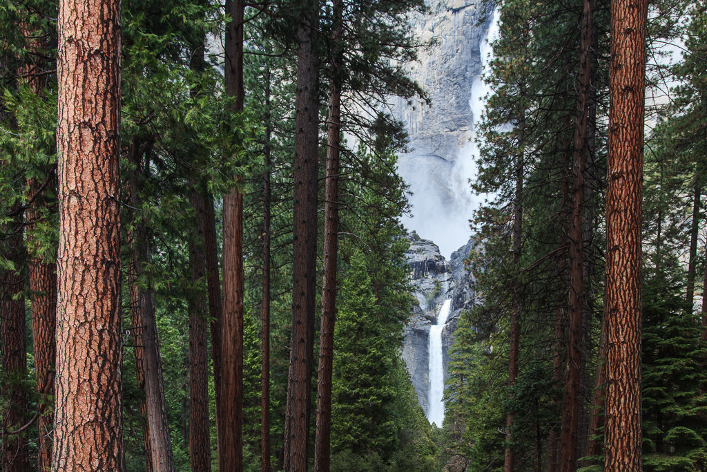 Photograph Yosemite Falls by Sabin Merino on 500px