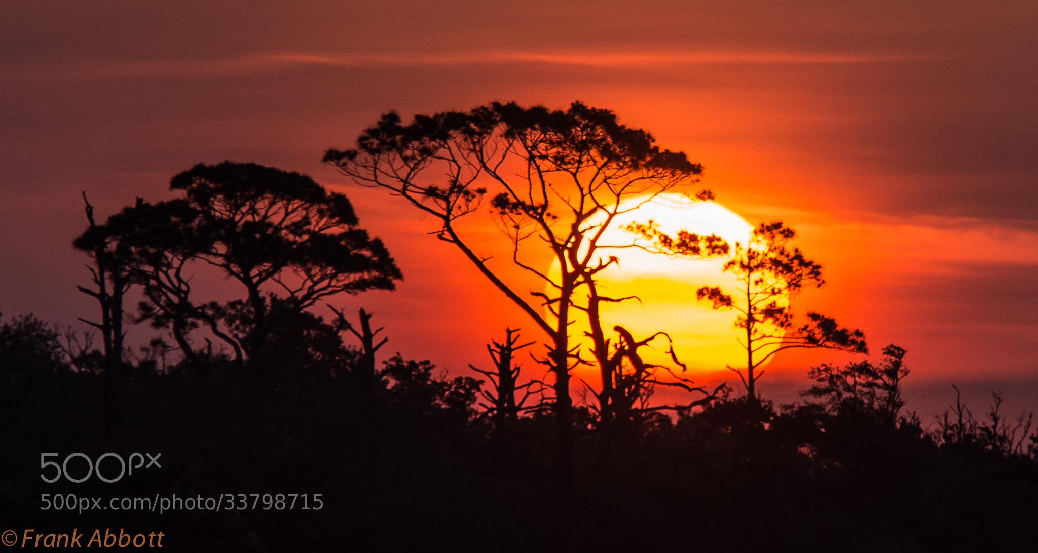 Photograph Sunrise by Franklin Abbott on 500px