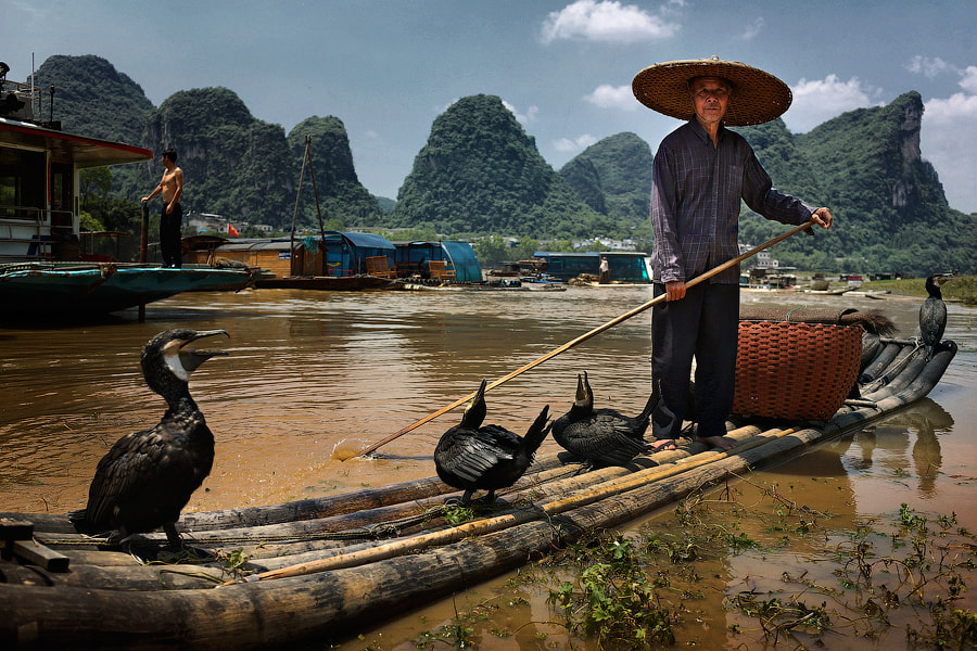 Photograph Fisherman with cormorants by Mark Podrabinek on 500px