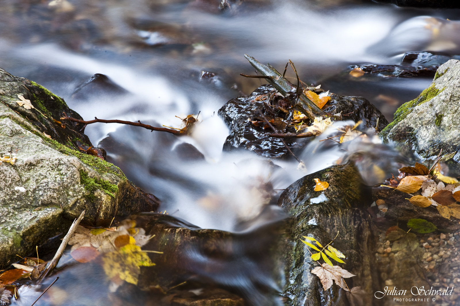 Photograph River in Autumn by Julian Schwald on 500px