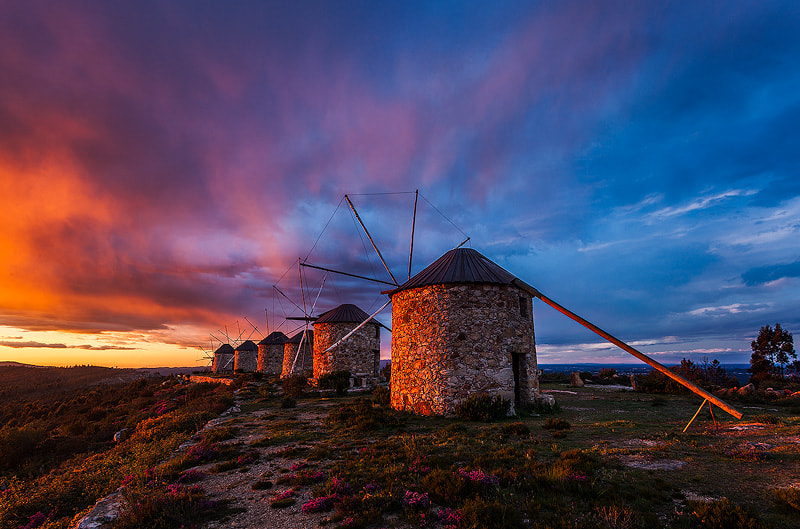 Photograph Windmills by Nuno Rodrigues on 500px