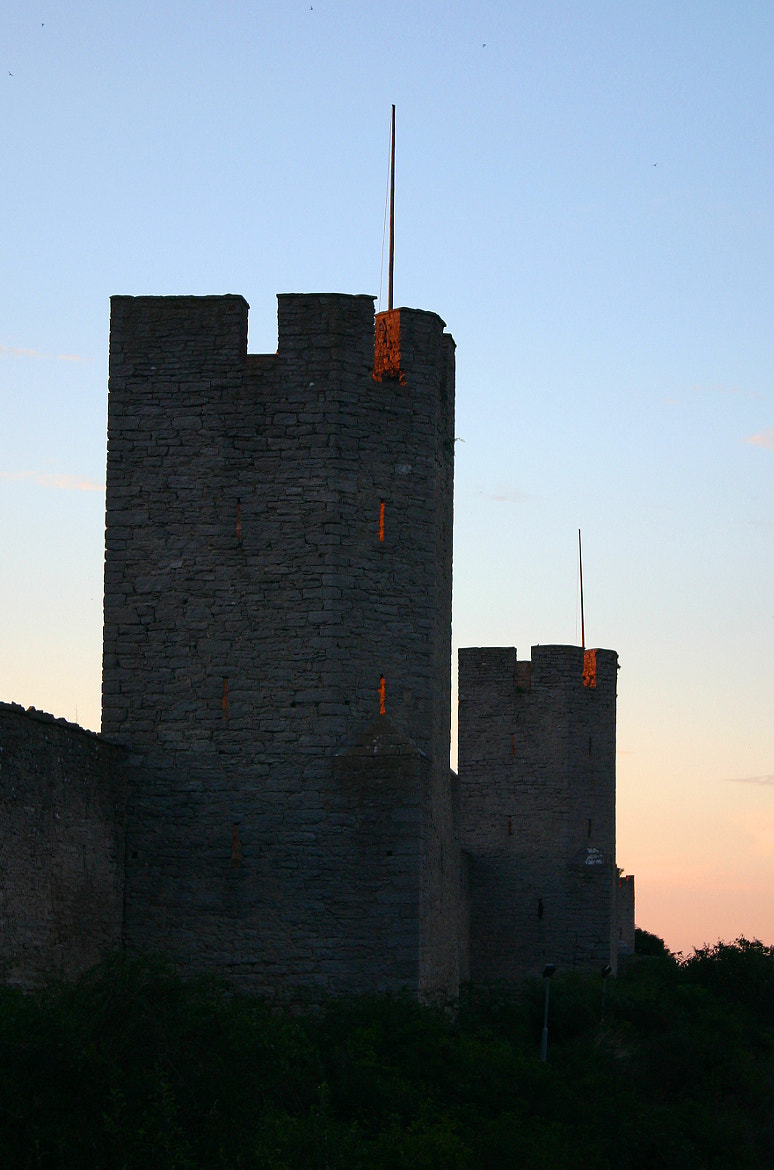 Photograph Visby walls by Anna Bettinelli on 500px