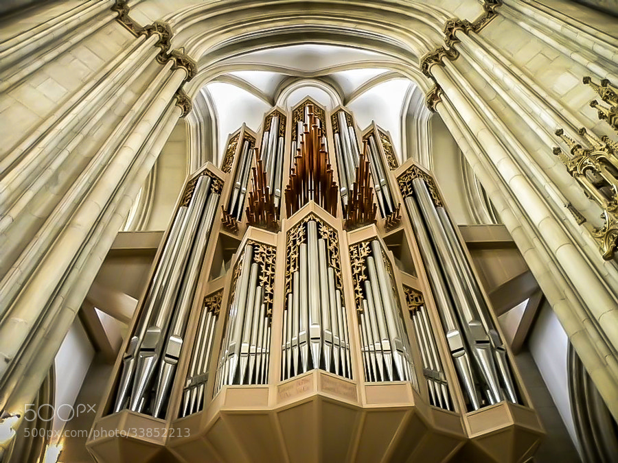 Photograph Organ by Maxwell Danger on 500px