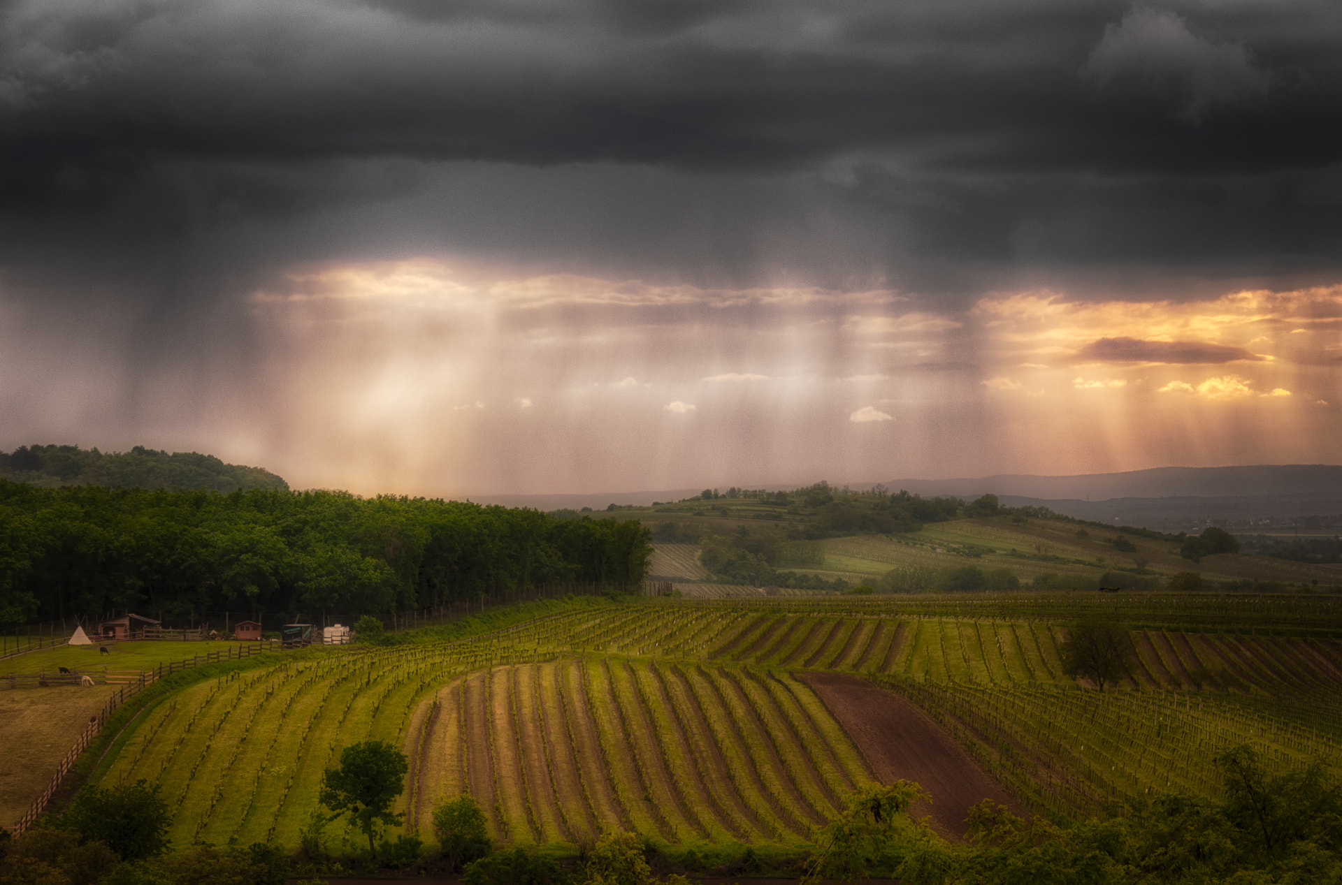 Photograph Hailstorm Arrival by Ernst Gamauf on 500px