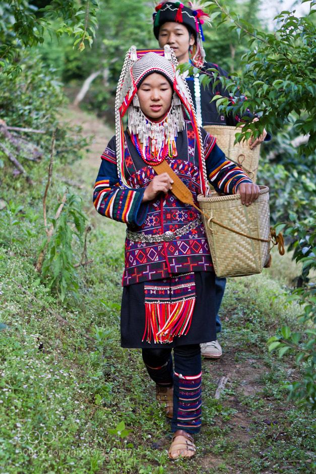 Kayan Lahwi or Padaung tribe girl of Burma  Descendants ...