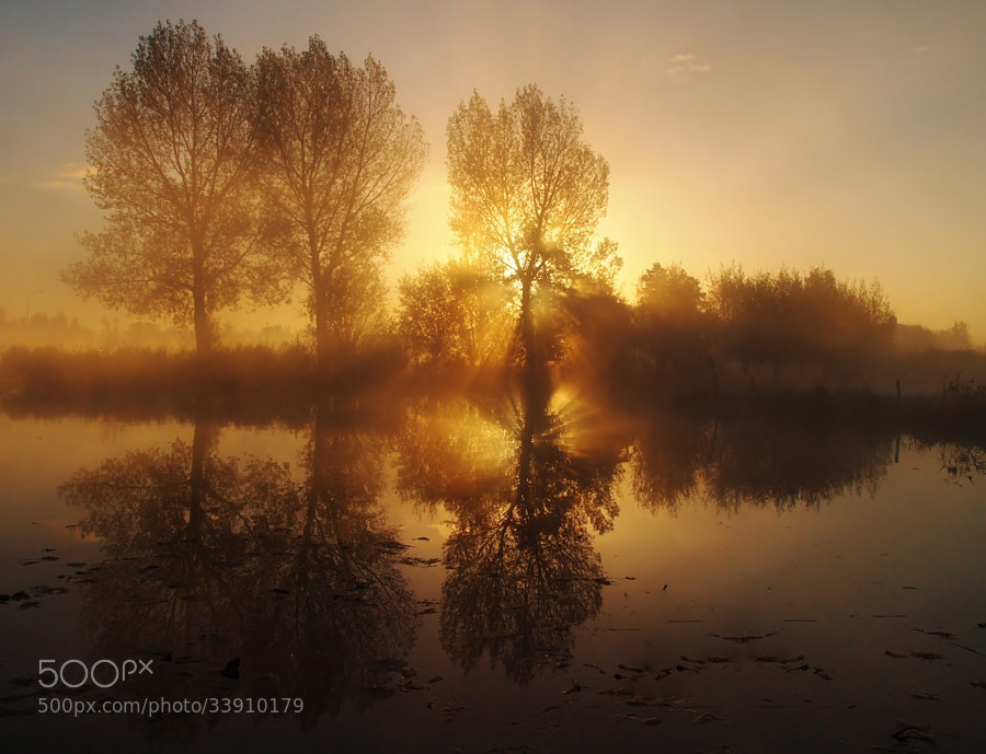 Photograph Untitled by Annemieke  on 500px