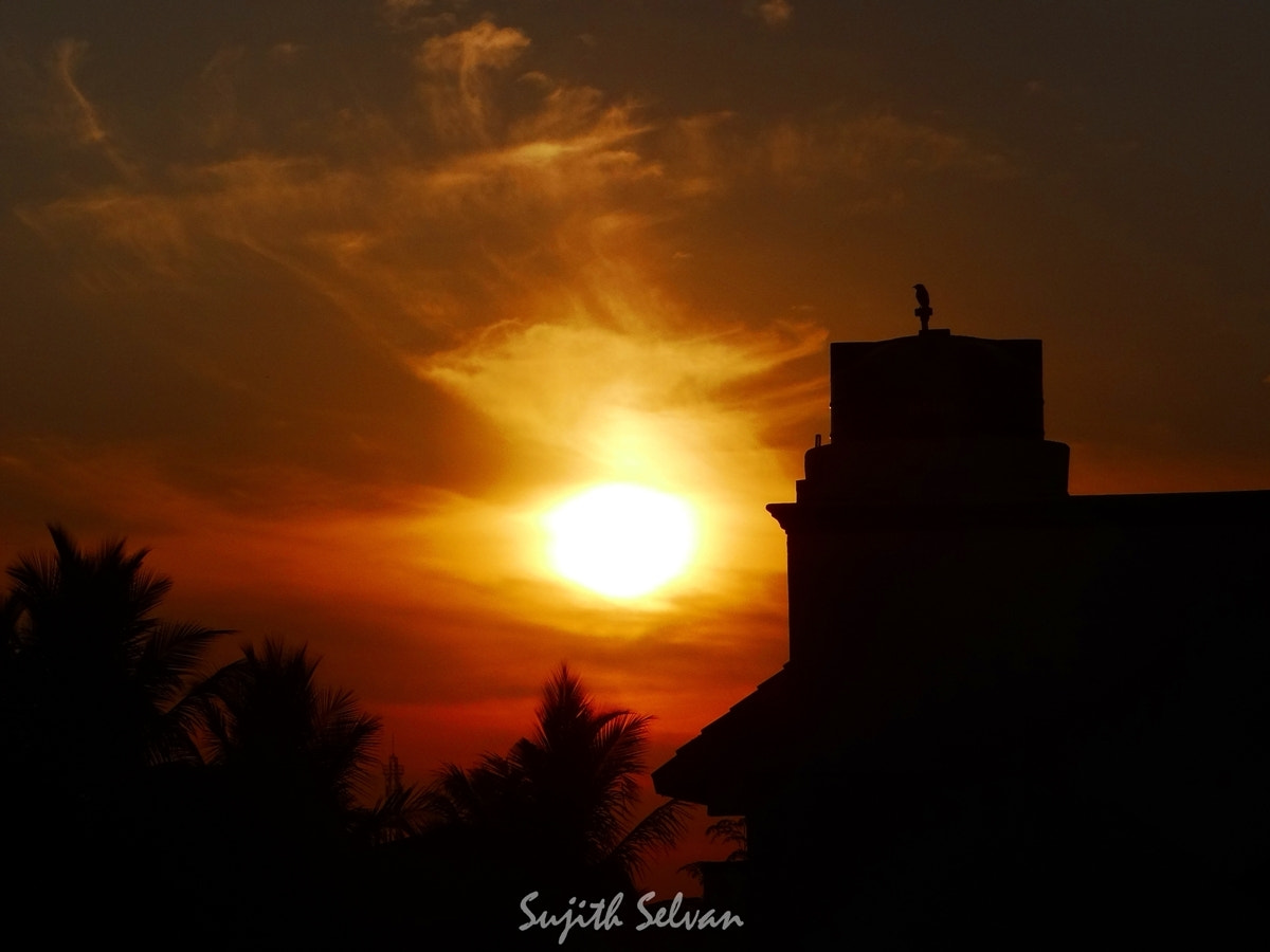 Photograph Silhouette morn.. by Sujith Selvan on 500px