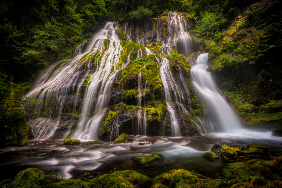 Photograph Panther Creek Falls by Matt Kloskowski on 500px