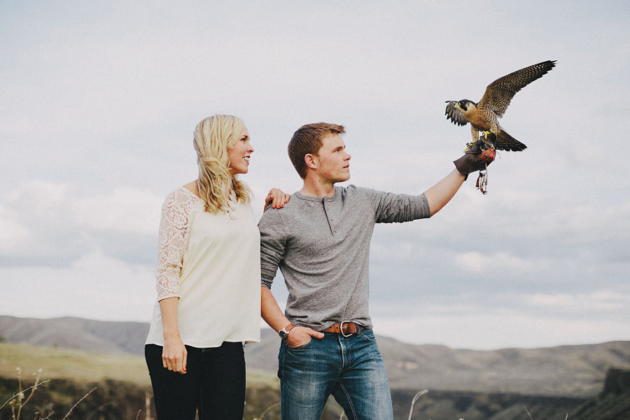 Falcon Engagement! by Sara K Byrne on 500px.com