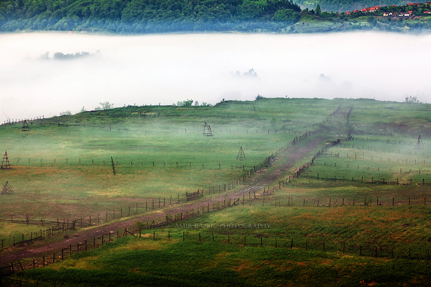 Photograph road and fog by Amir Bajrich on 500px