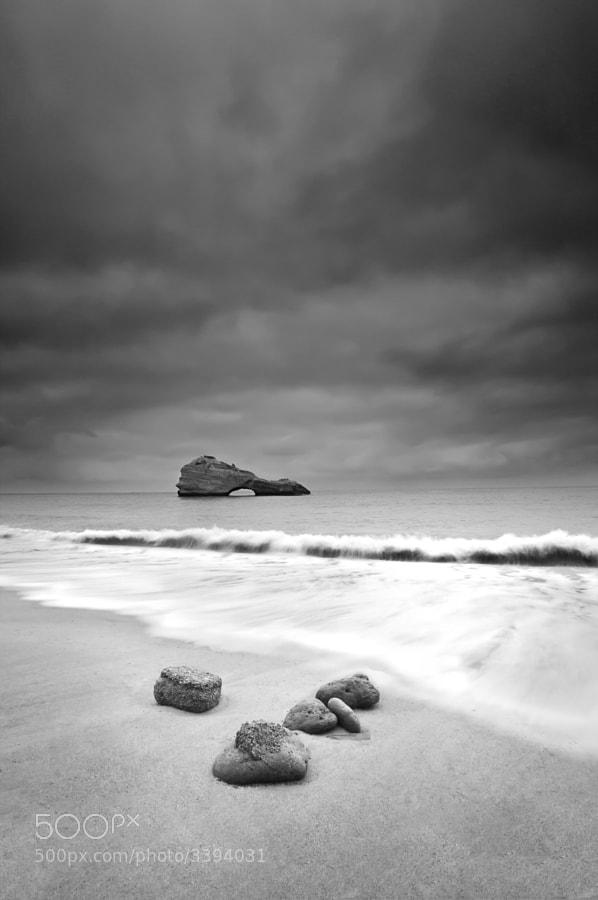 biarritz, europa, francia, france, sea, mar, mer, b&w, marina, cormoran, roc, wave, sand, v