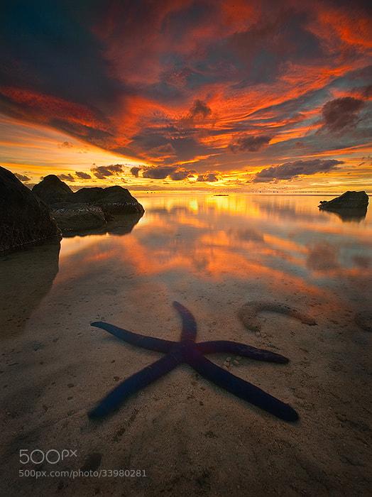 Photograph Etu Moana by Michael Anderson on 500px