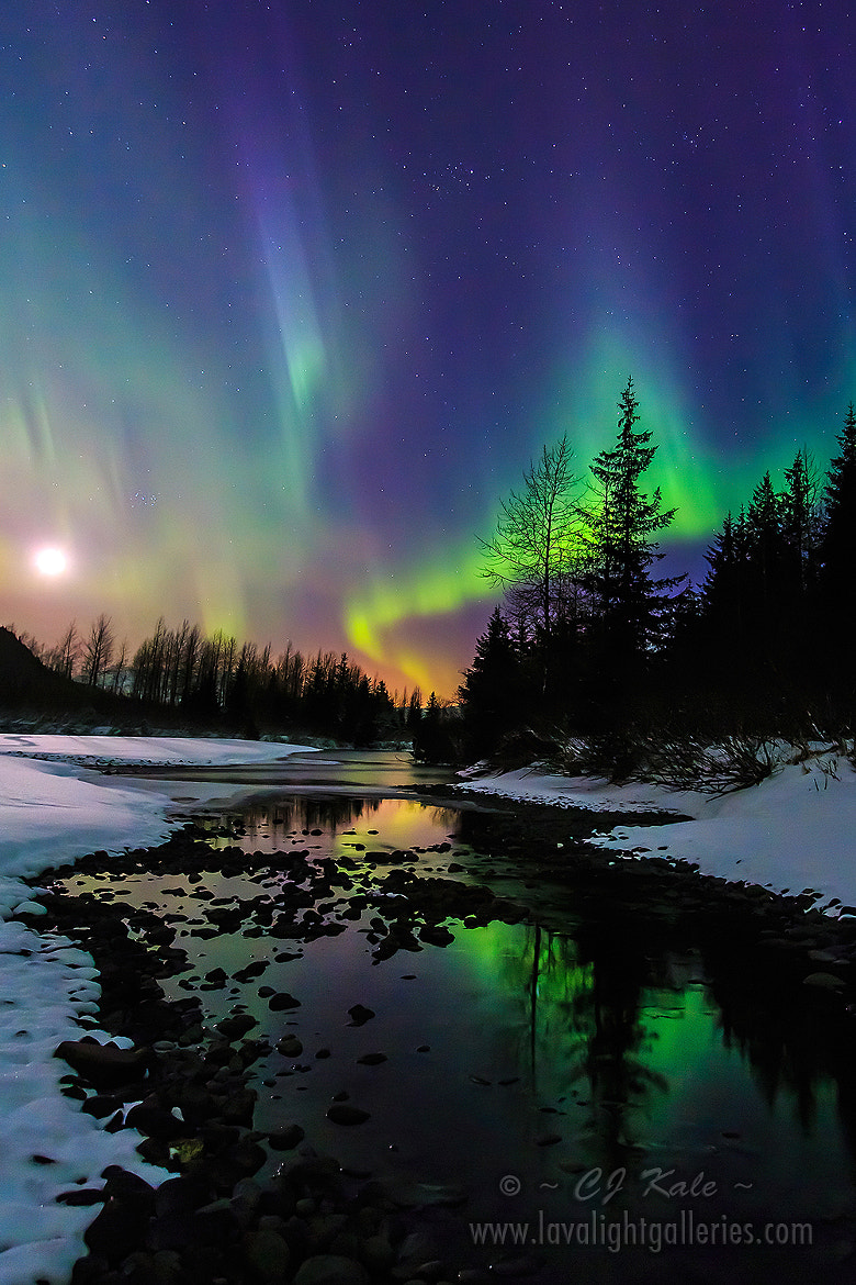 Photograph Aurora moonset by Cj Kale on 500px