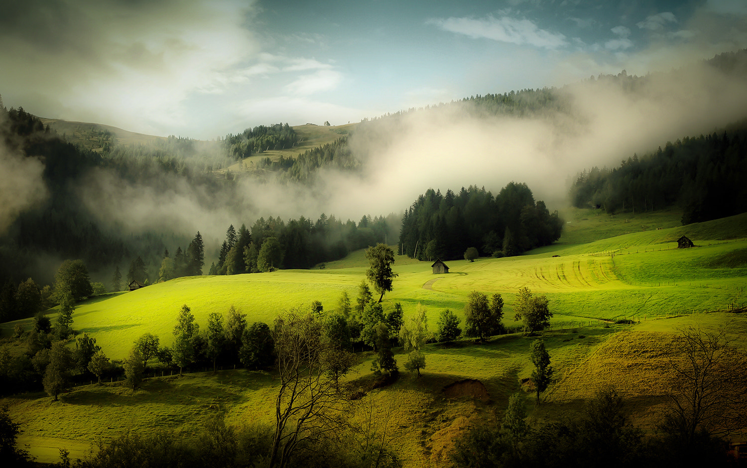 Photograph forest edge by Andy 58 on 500px