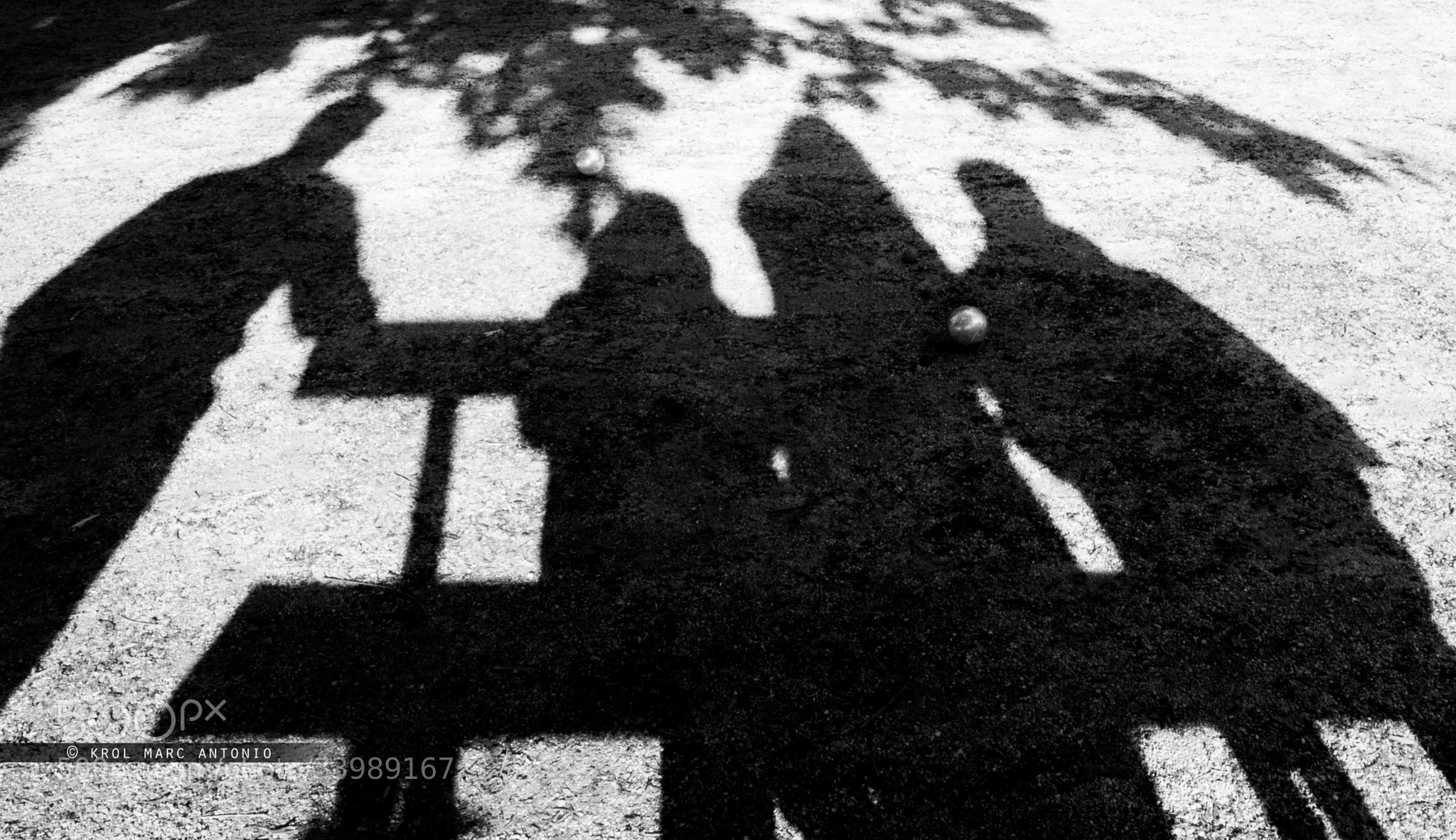 Photograph Friends by Krol  Marc Antonio on 500px