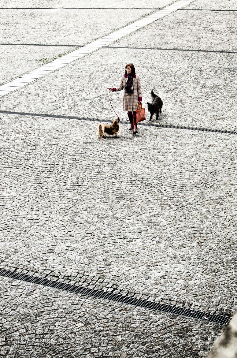 Photograph Out with the dogs by JT Jones on 500px