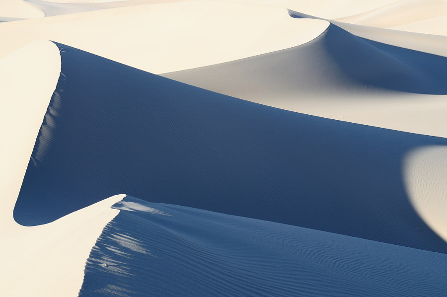 Photograph Dune in Sunshine by Gene Yang on 500px