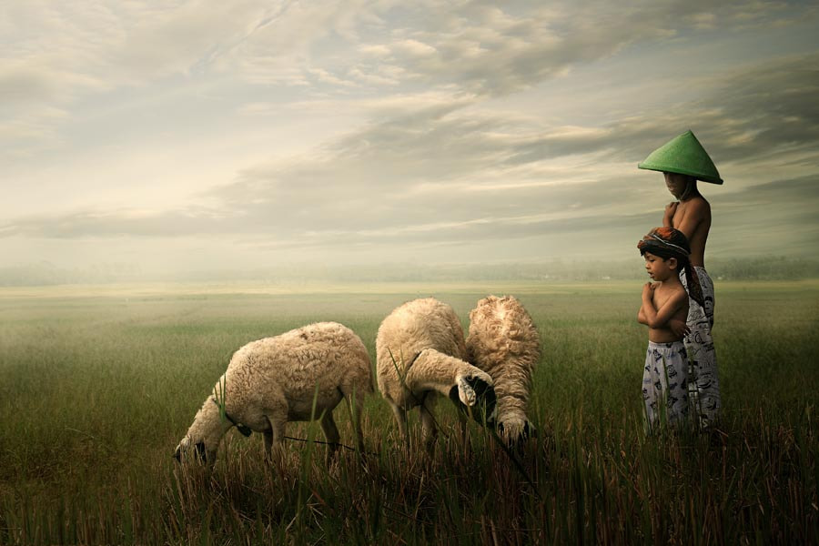 Photograph the friendship by budi 'ccline' on 500px