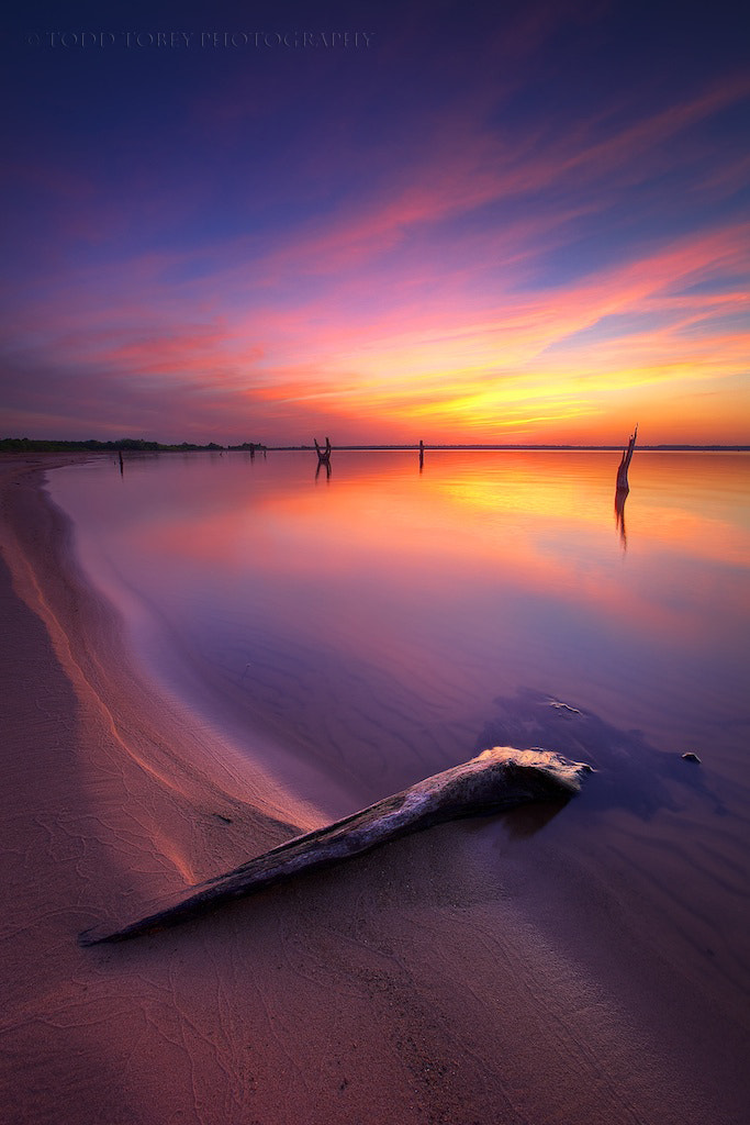 Photograph Sensuous Sands by Todd Tobey on 500px