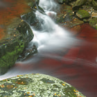 tanins flow in a river stream