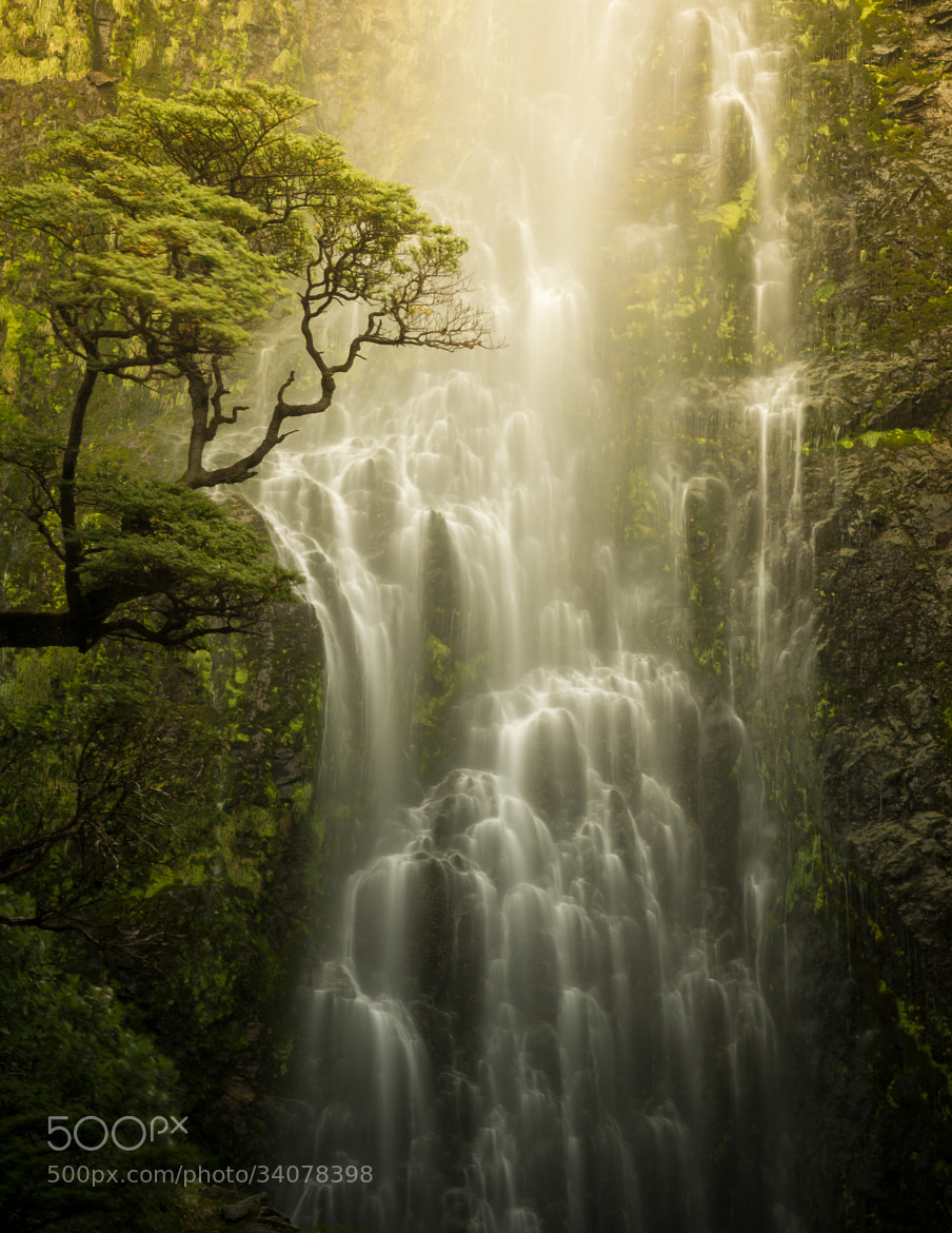 Photograph Waterfall by Thysje Arthur on 500px