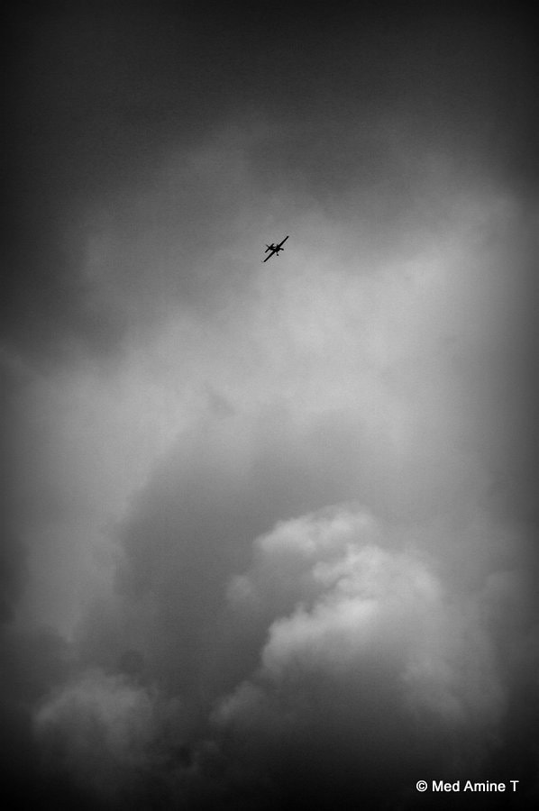 Photograph Fly with me by Med Amine on 500px