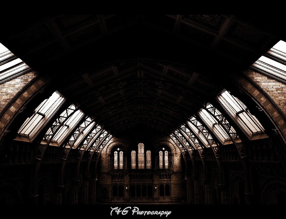 Photograph Cathedral for history  by T&G Photography  on 500px