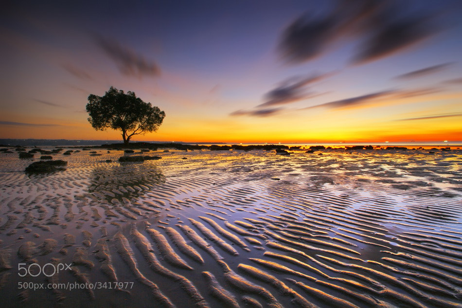 Photograph Clarity Twilight by Aris Winahyu BR on 500px