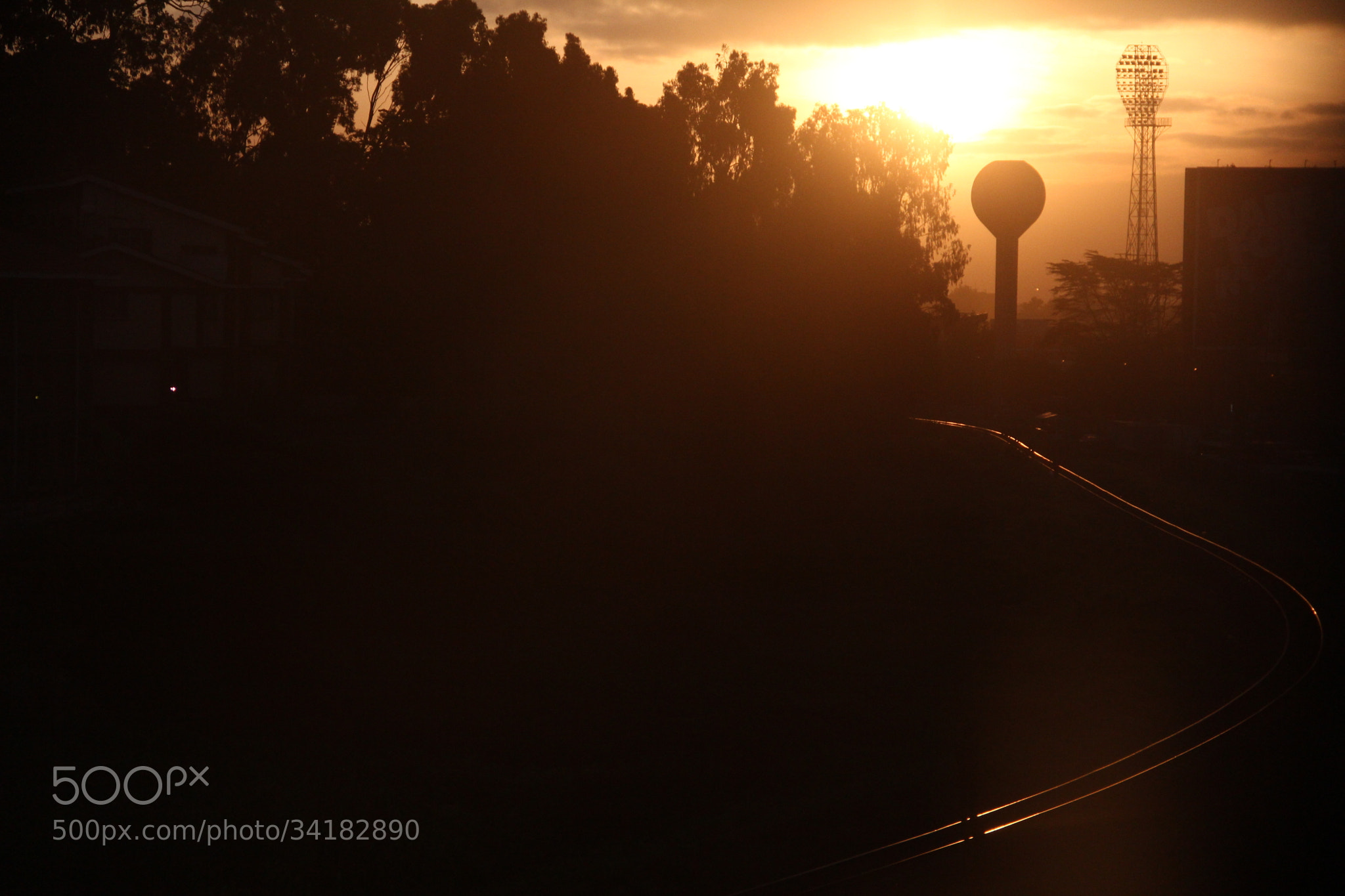 Photograph sunny train tracks by wambuikisienya on 500px