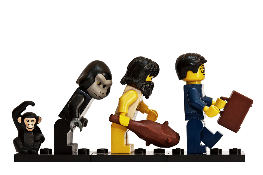 Photograph The Evolution of LEGO Man by Stephen O Mahony on 500px