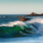 Costa de Cochoa ( V Region ) Chile