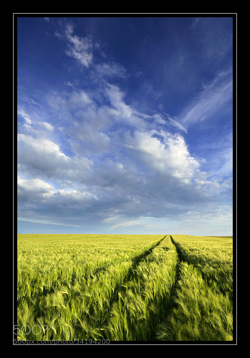 Photograph somewhere in field by Alexandre Leroux on 500px