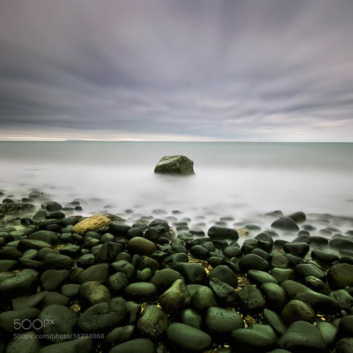 Photograph Braveheart by Lukasz Maksymiuk on 500px